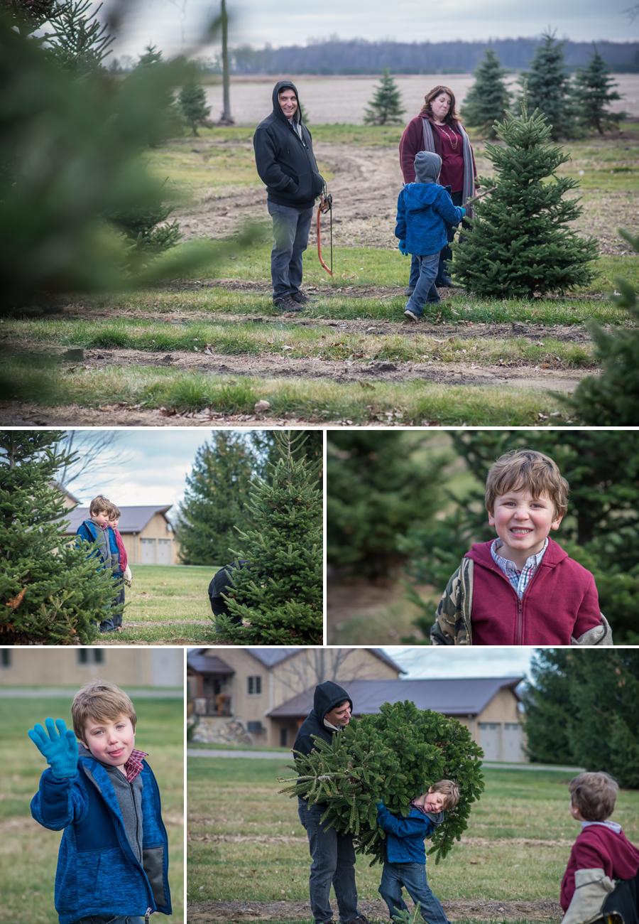Puddleford Tree Farm