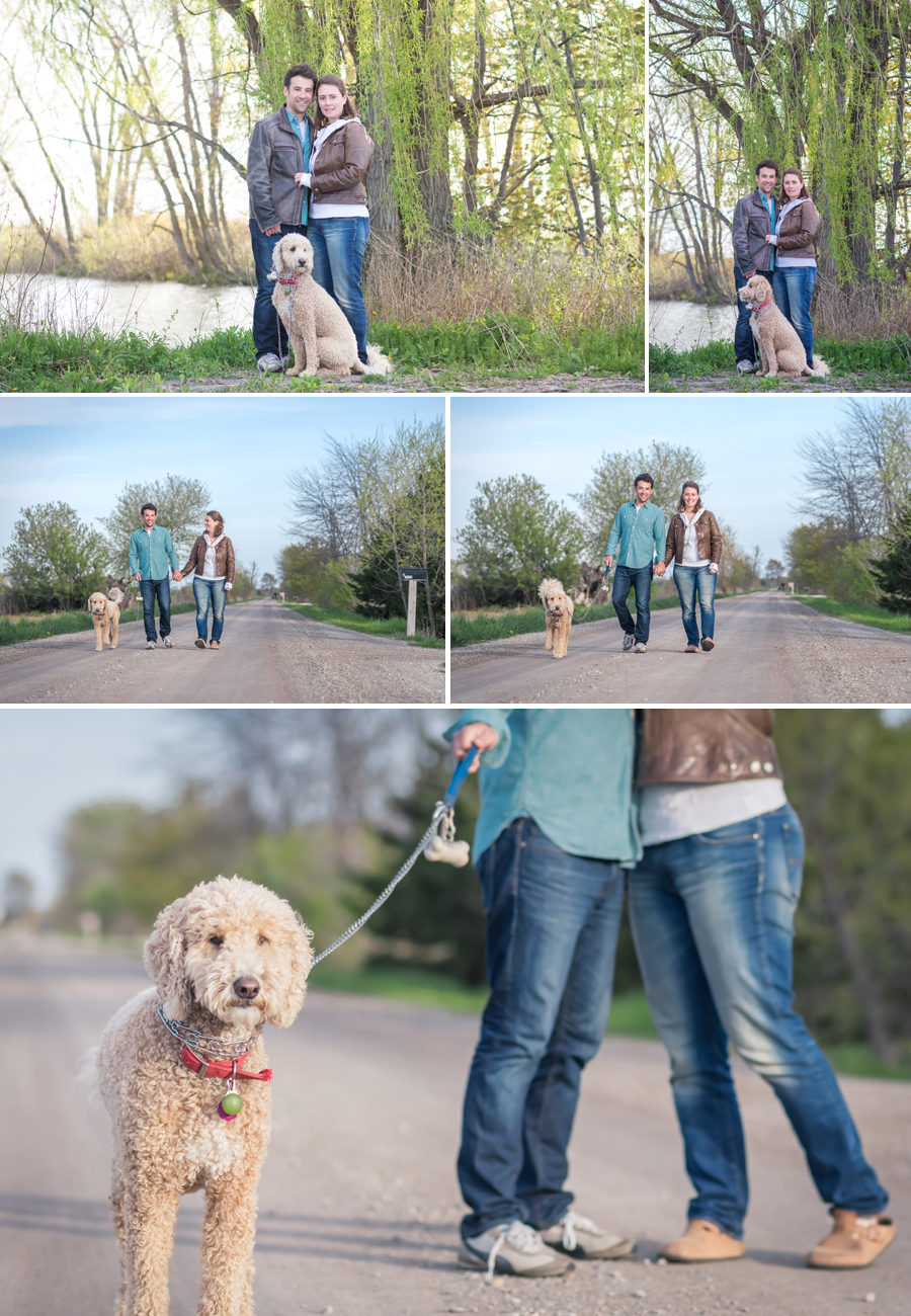 Pet Photographer Chatham Ontario